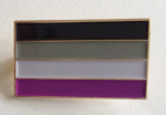 Asexual Pride Flag Rectangular Enamel Pin Badge